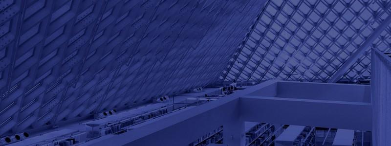 blur-library-blue cop